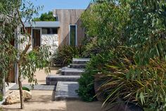 like the native garden house combo Coastal Gardens, Beach Gardens, Outdoor Gardens, Australian Garden Design, Australian Native Garden, Outdoor Steps, Patio Steps, Country Landscaping, Garden Landscaping