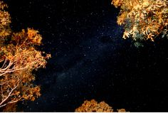 Starry Night at Milparinka Camp