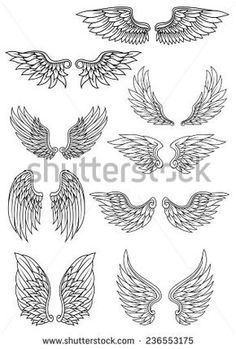 Set of heraldic wings outline in black and white with feather detail for use in heraldry and religion design - Set of heraldic wings outline in black and white with feather detail for use in heraldry and religi - Tattoo Sketches, Tattoo Drawings, Art Sketches, Rosen Tattoo Frau, Wings Sketch, Graffiti, Wing Tattoo Designs, Tattoo Stencils, Pencil Art Drawings