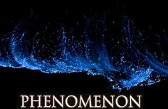 What is Reality?  Mental Representations... http://What-Buddha-Said.net/drops/IV/What_is_a_Phenomenon.htm