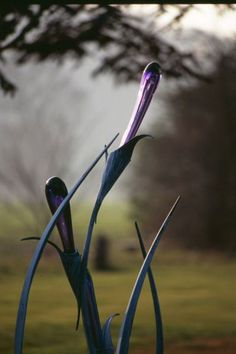 Forged Steel and Blown Blown Glass Garden Or Yard / Outside and Outdoor sculpture by sculptor Jenny Pickford titled: 'New Growth (Steel and Blown Glass Flower Bud garden statues/sculpture)' - Artwork View 2