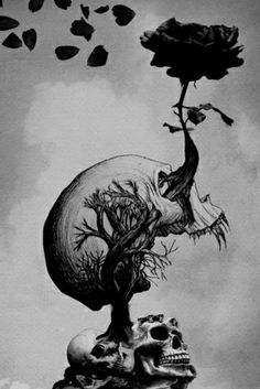 art, black and white, darkness, gothic, horror, macabre, rose, skull