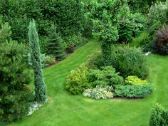 – Gardening Tips Beautiful Gardens, Conifers Garden, Vegetable Garden Design, Garden Whimsy, Royal Garden, Garden Styles, Grasses Garden, Evergreen Garden, Garden Planning