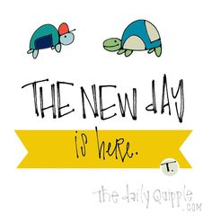 Embrace This Day | The Daily Quipple