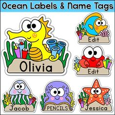 Ocean Theme Labels and Name Tags: These fun sea / ocean animals name tags and labels will look fantastic in your classroom! This set is so versatile because you can make any labels that you want with the included blank labels and editable PowerPoint file. Classroom Labels, Kindergarten Classroom, Classroom Themes, Ocean Themed Classroom, Classroom Name Tags, Toddler Classroom, Ocean Theme Decorations, Ocean Themes, Sea Decoration