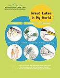 Great Lakes in My World curriculum (either K-8 or 9-12)  look up on google for a few free lesson plans