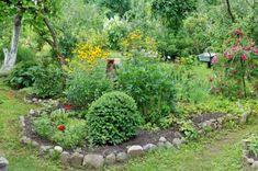 Outdoor, Plants, Terrace, Outdoor Decor, Stepping Stones, Garden