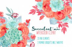 Succulent mix RB-15 by Charushella on @creativemarket