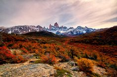 thats how autumn in patagonia looks like [19201080][OC] #reddit