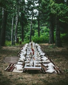 outdoor forest gathering