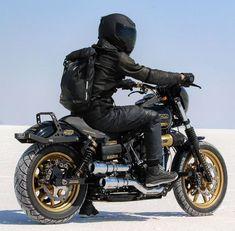 Harley Dyna, Harley Davidson Dyna, Harley Davidson Street, Harley Davidson Motorcycles, Dyna Club Style, Ninja Motorcycle, Bobber Bikes, Street Bob, Scooter Girl