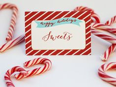 Free Cute Christmas Place Card Printable Places Christmas And - Place card setting template