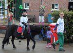 Activiteiten kalender Kinderboerderij Merenwijk.