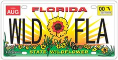 Help feed the bees that feed us - get growing with Florida's wildflowers! The Florida Wildflower Foundation has all the resources you'll need to get started. Search for publications, apply for grants, get classroom resources and more. Apply For Grants, Flowering Shrubs, All Flowers, Garden Spaces, Flower Pots, Nativity, The Neighbourhood, Foundation, Florida