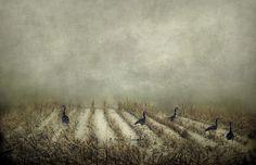 Begin Again...   by jamie heiden