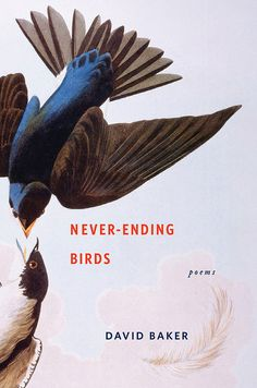 Never-Ending Birds: Poems. Jacket design: Lynn Buckley Jacket illustration: Swallows by Audubon, The Granger Collection, New York