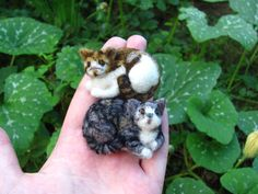 I AM FREAKING OUT HERE!!!  This is literally the coolest thing I have seen in AGES!!! Needle felted likeness of your pet (and all kinds of other critters) by HandmadeByNovember on Etsy. Description given:  Needle felted likeness of your cat made as a pin. The brooch measures 6,5 x 5,5 cmMade of wool.  THIS IS MADE TO ORDER ITEM! The listing is for one brooch. Please send me some photos of your cat and I'll make its little wearable portrait.