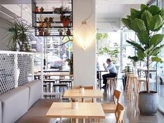 Major Sprout - Shelving and bench seating