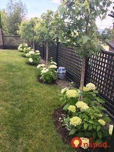 52 Fresh Front Yard and Backyard Landscaping Ideas for 2019 – - DIY Garten Landschaftsbau Backyard Sheds, Backyard Garden Design, Fenced In Backyard Ideas, Simple Backyard Ideas, Backyard Storage, Pool Backyard, Rustic Backyard, Fence Garden, Lawn And Garden