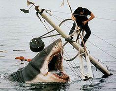Scene of Jaws #scene #film