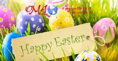 Happy Easter Pictures For Facebook Funny Easter Images, Easter Images Religious, Easter Images Free, Happy Easter Photos, Funny Easter Bunny, Easter Bunny Pictures, Happy Easter Wishes, Easter Speeches, Happy Easter Wallpaper