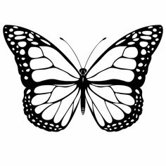 Monarch butterfly Coloring Page . Monarch butterfly Coloring Page . Detailed butterfly Coloring Pages Coloring Pages White Butterfly Tattoo, Butterfly Outline, Butterfly Stencil, Butterfly Tattoo Designs, Butterfly Template, Butterfly Photos, Printable Butterfly, Butterfly Design, Big Butterfly