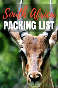 Packing for a South Africa Safari is tough when you're restricted on size & weight. This carry-on safari packing list is perfect for a South African safari. Ultimate Packing List, Packing Tips For Travel, Travel Info, Packing Lists, Travel Essentials, Travel Guides, Las Vegas, South Africa Safari, Kruger National Park