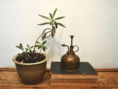 Vintage brass plant mister