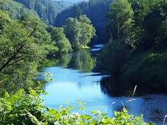 Alsea River in Waldport, Oregon  I visited this river a couple of times when my Dad had a house on the river. Went swimming here just off his dock, and then took a ride in his fishing boat to see more of the river...gorgeous area!