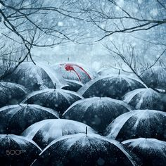 Fotograf A busy winter time von Caras Ionut auf I Love Rain, Happy New Year 2014, Under My Umbrella, Umbrella Art, Virginia Woolf, World Best Photos, Winter Time, Winter Storm, Rainy Days