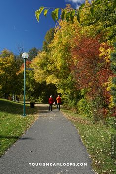 Spend the crisp fall days of Kamloops hiking trails with the best golden hues of autumn. Here are 5 of the top accessible trails that are relatively wide and flat for the whole family. Sunset Valley, Salmon Run, Autumn Day, Fall Days, Riverside Park, River Trail, Deciduous Trees, Pine Forest, Native Plants