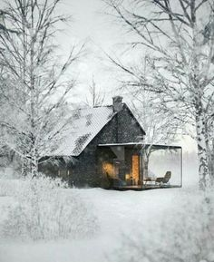 House forest snow nature 45+ ideas