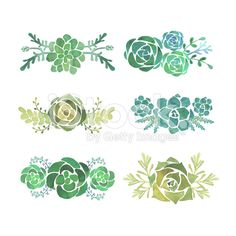 Watercolor succulent set royalty-free stock vector art