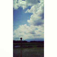Beautiful White Clouds on Blue Canvas Above The Green Field – made by God  Taken at somewhere when I'm on my way to my hometown, in Indonesia. December 26 2013.