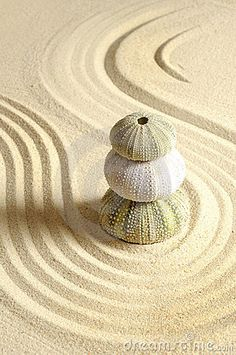 beach zen garden? yes, please!