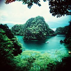 Kayangan Lake, which is located at Coron Island, Northern Palawan is said to be the cleanest lake in the Philippines. Sometimes called the Blue Lagoon, this freshwater lagoon is amidst sheer limestone cliffs. This beautiful picture-perfect scenery can be seen after a walk up a mountain trail.