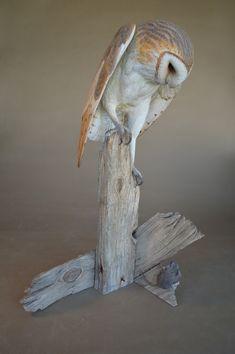 Richard Finch/carved from wood---incredible! Owl Art, Bird Art, Dremel Wood Carving, Bird Statues, Paper Birds, Ceramic Animals, Fauna, Wood Sculpture, Woodcarving