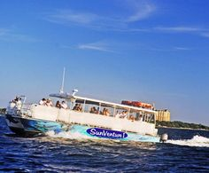 dolphin and sunset cruises now available in South Walton!