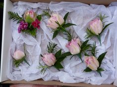 Buttonhole with Pink Tulips with Rosemary grown and made by Sussex cutting garden.