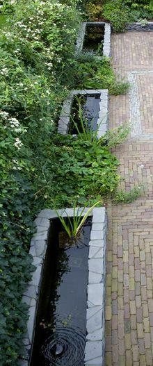 regenwater en rozen « Studio TOOP Tuinarchitectuur