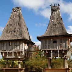 🏝Schon mal was von #TimorLeste gehört? Dort kommt verdammt guter Kaffee her! ☕   http://bunaa.de/de/timor-leste/  http://bunaa.de/en/timor-leste-2/   #Coffee #bunaa