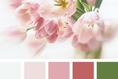 Color Palette #3465