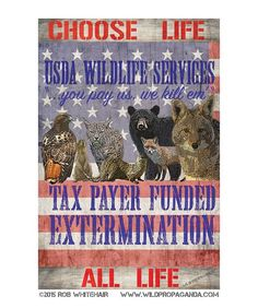 Artwork by Rob Whitehair @wildpropaganda  Wildlife Services is a largely unknown program run by the US Dept. of Agriculture that slaughters over 3 million wild native animals a year.  Although they were originally founded to help eradicate invasive species they have since turned into a secretive non transparent and non-discriminate killing machine.  If a rancher farmer business owner or citizen reports an animal as undesirable for any reason Wildlife Services steps in to eradicate it. Bears…