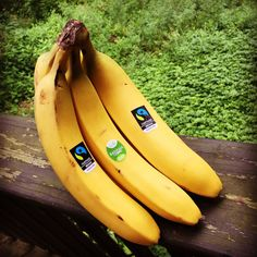 🍌 When you buy Fairtrade bananas you know they came from a farm that values workers' rights & the environment. Click the Pin for more info. Workers Rights, Poster Ideas, Fair Trade, Bananas, Countries, Avocado, Environment, Spirit, Mood