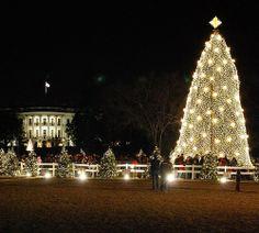a Washington, D.C. Christmas #theWhiteHouse @Kirstin Hein.com #DC #DistrictofColumbia