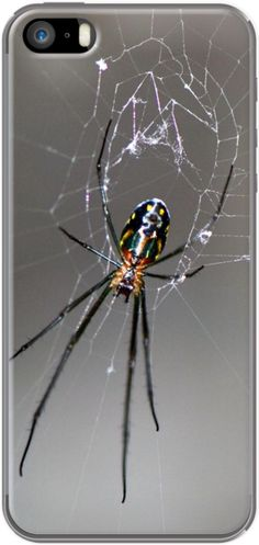 #spider on the #web By #Bluelight - #iPhone 5/5s #Case