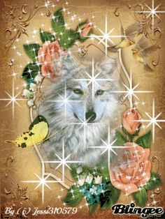 Wolf Images, Wolf Photos, Wolf Pictures, Native American Wolf, Native American Images, Spiritual Animal, Fantasy Wolf, Wolf Spirit Animal, Wolf Wallpaper
