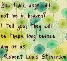 Dogs & Heaven go together