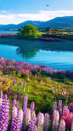 Wallpaper Nature Flowers, Beautiful Landscape Wallpaper, Beautiful Landscapes, Beautiful Photos Of Nature, Nature Photos, Amazing Nature, Beautiful Scenery, Scenery Photography, Landscape Photography