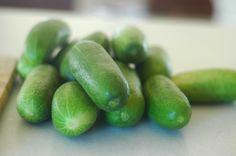 Fermented Pickles: Feed the gut, man! - The Elliott Homestead